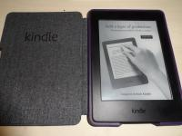 kindle_rif.17275